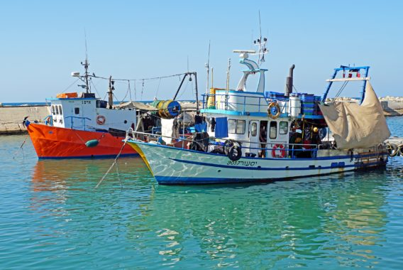 Global Fishing Watch Research Workshop Re Cap Nereus Program The